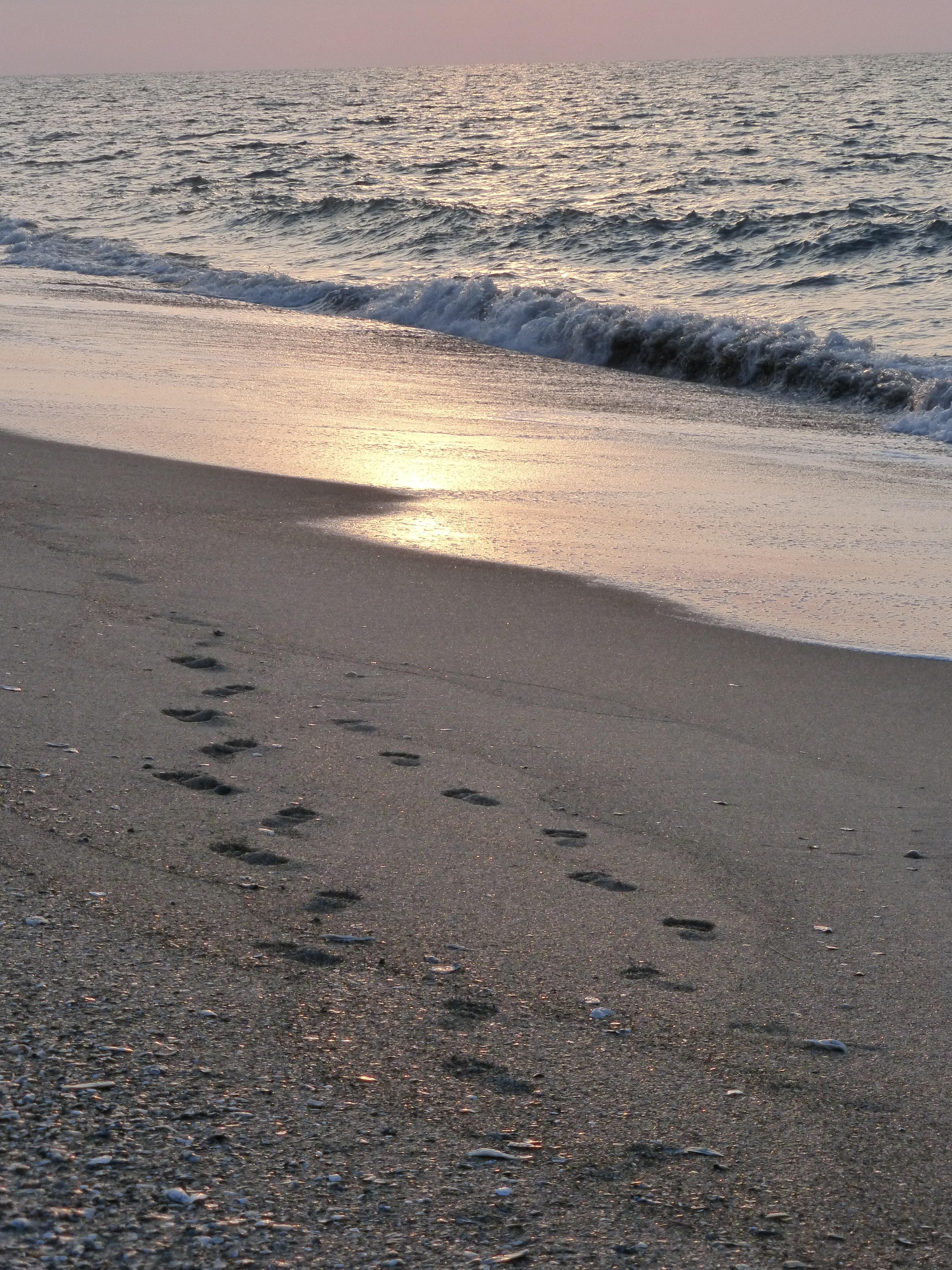 Sunrise At Edisto Beach Sc 5 25 14